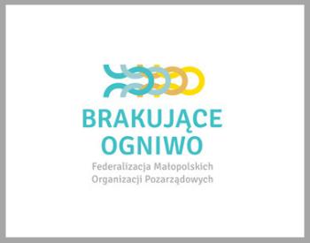 aktualne projekty strona www BIS (11)
