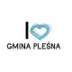 Projekt Doskonalenie mechanizmów konsultacji społecznych w gminie Pleśna